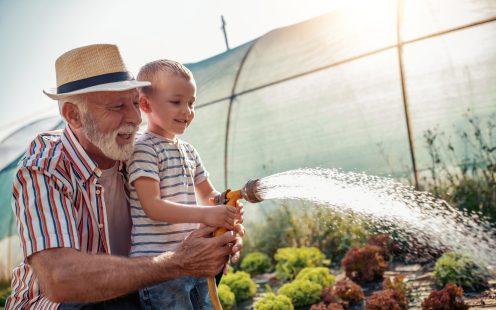 Grandfather with his grandson working in the garden,watering salads.